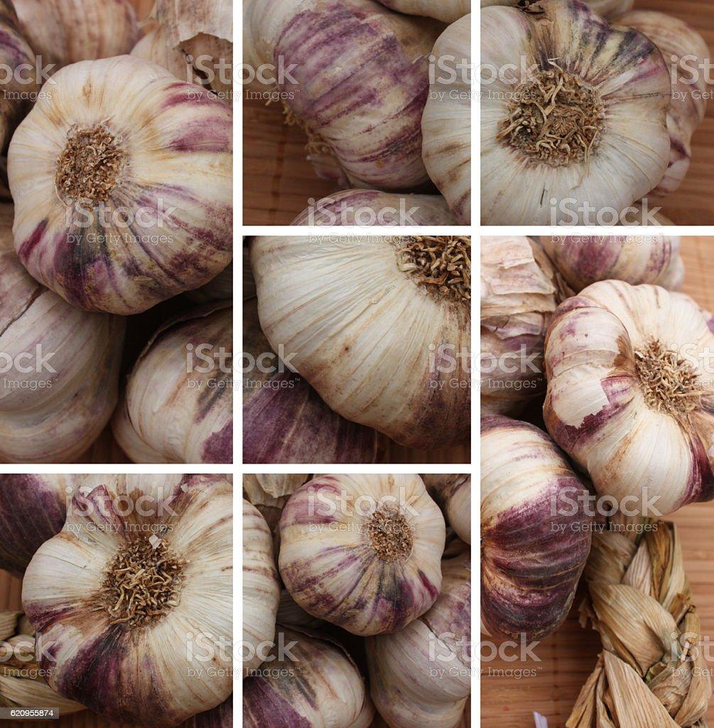 Ail violet - Tresse d'Ail stock photo