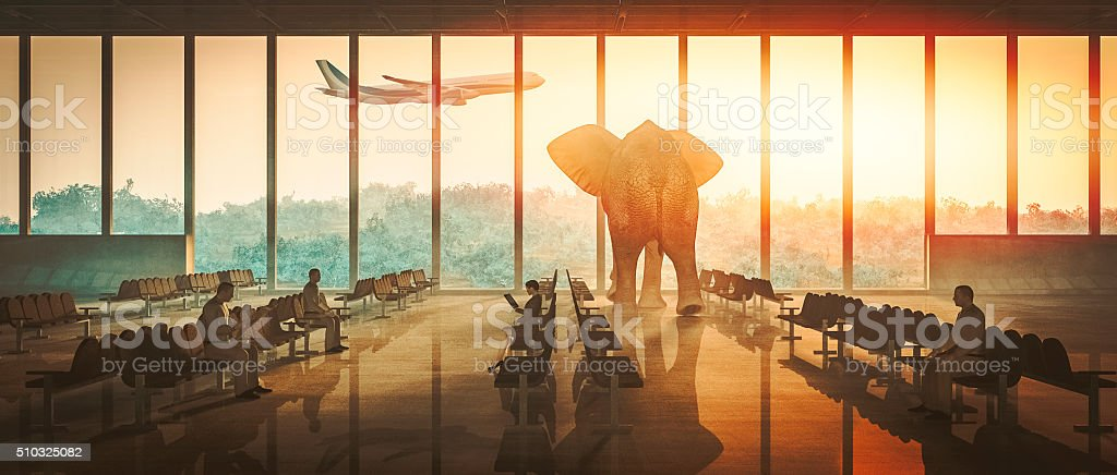 Aiport elephant watching airplane take off stock photo