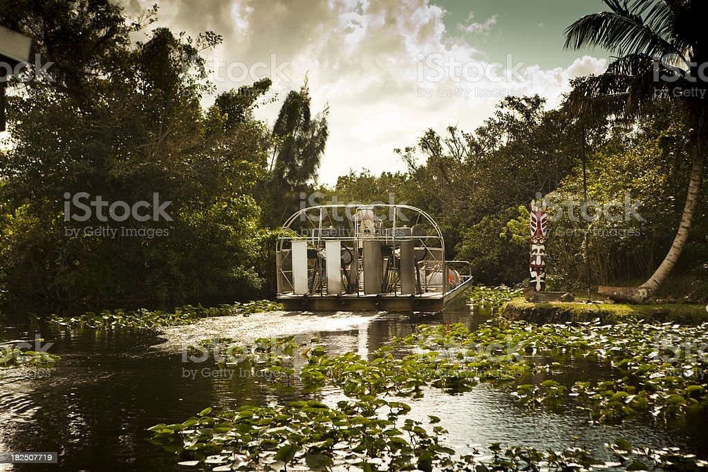Air boat glides into the wetlands stock photo