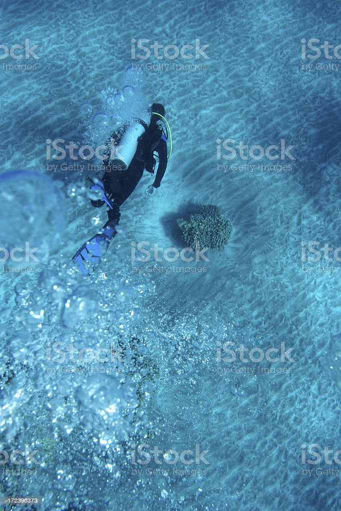 Air bulles de plongeur sous-marin photo libre de droits