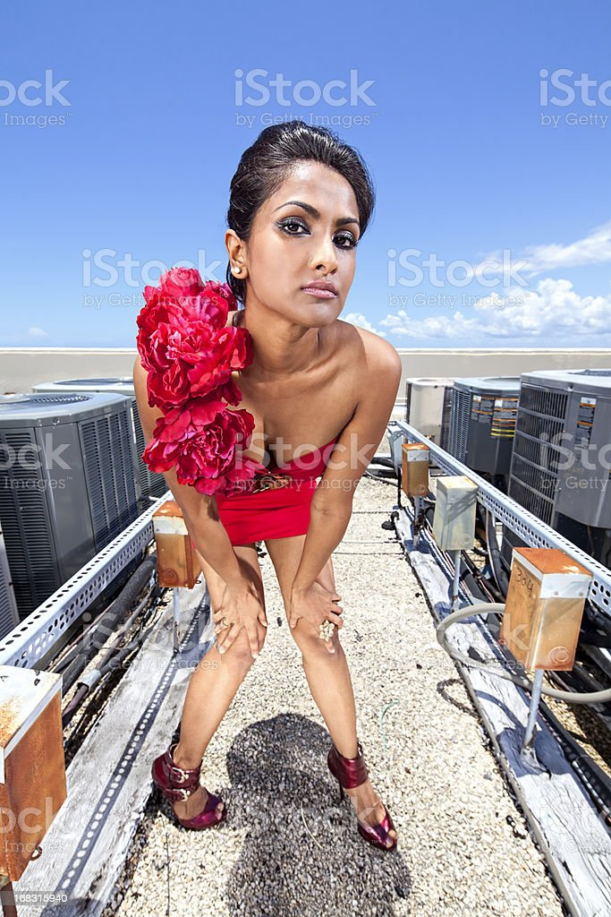 Air Conditioned Beauty stock photo