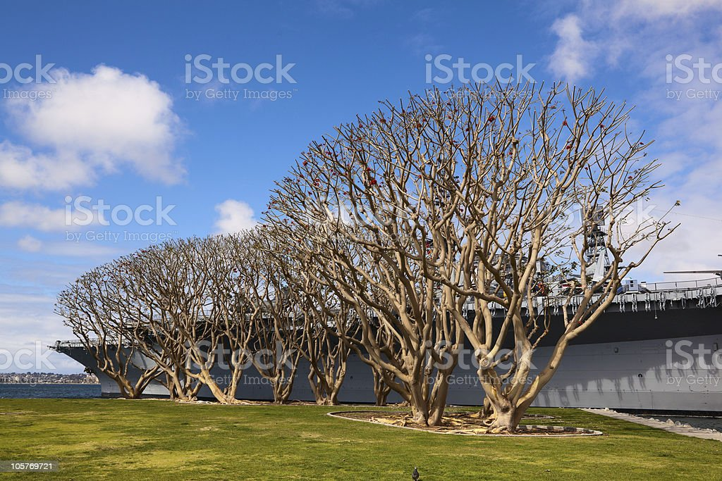 Air Craft Carrier and Trees stock photo