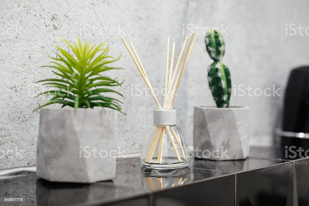Air fresher and house plants on black tiles stock photo