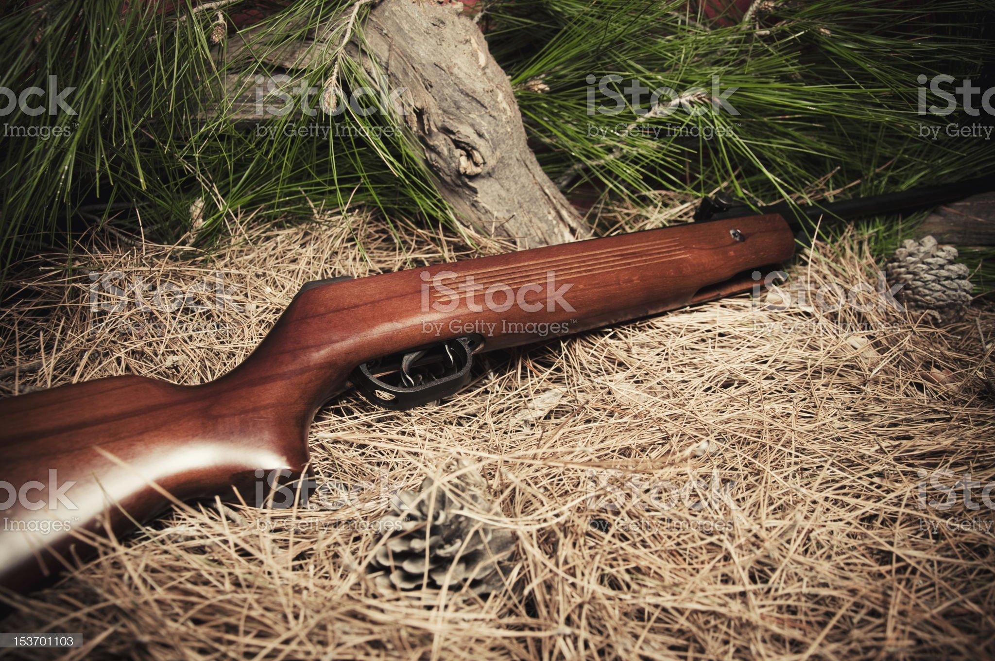 Air Gun royalty-free stock photo