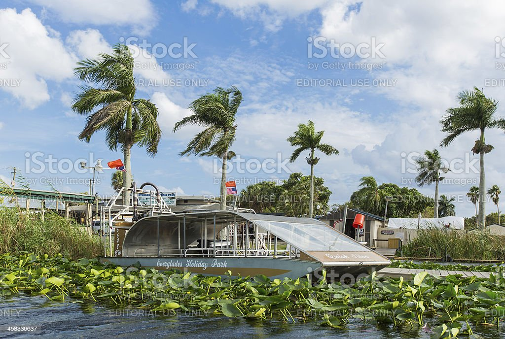 airboat in the florida everglades stock photo