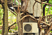 Aircondition and  big tree,Nature and Technology Concepted