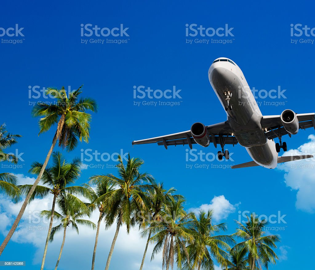 Airliner landing over palm trees at a holiday destination stock photo