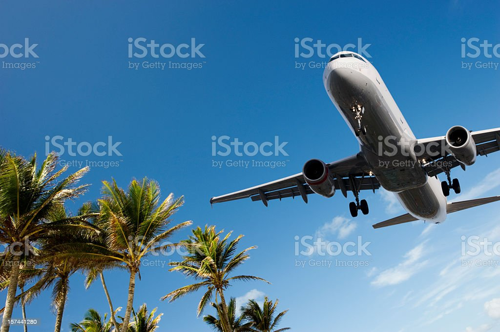 Airliner Landing Passing Over Palm Trees stock photo