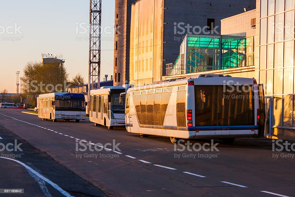 Airport buses in the morning light near the terminal under construction royalty-free stock photo