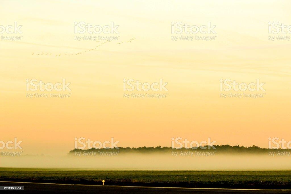 Airport Fog stock photo