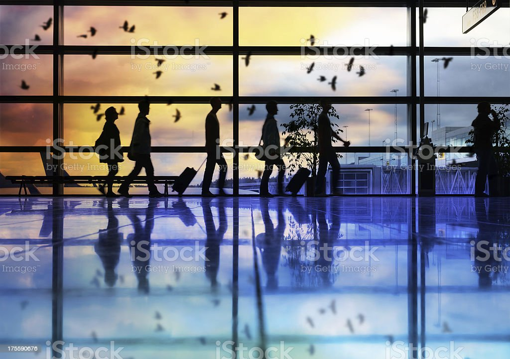 Airport terminal, travellers in silhouette, birds flying royalty-free stock photo