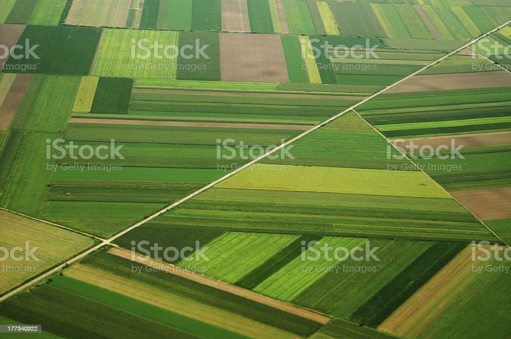 airview of field stock photo