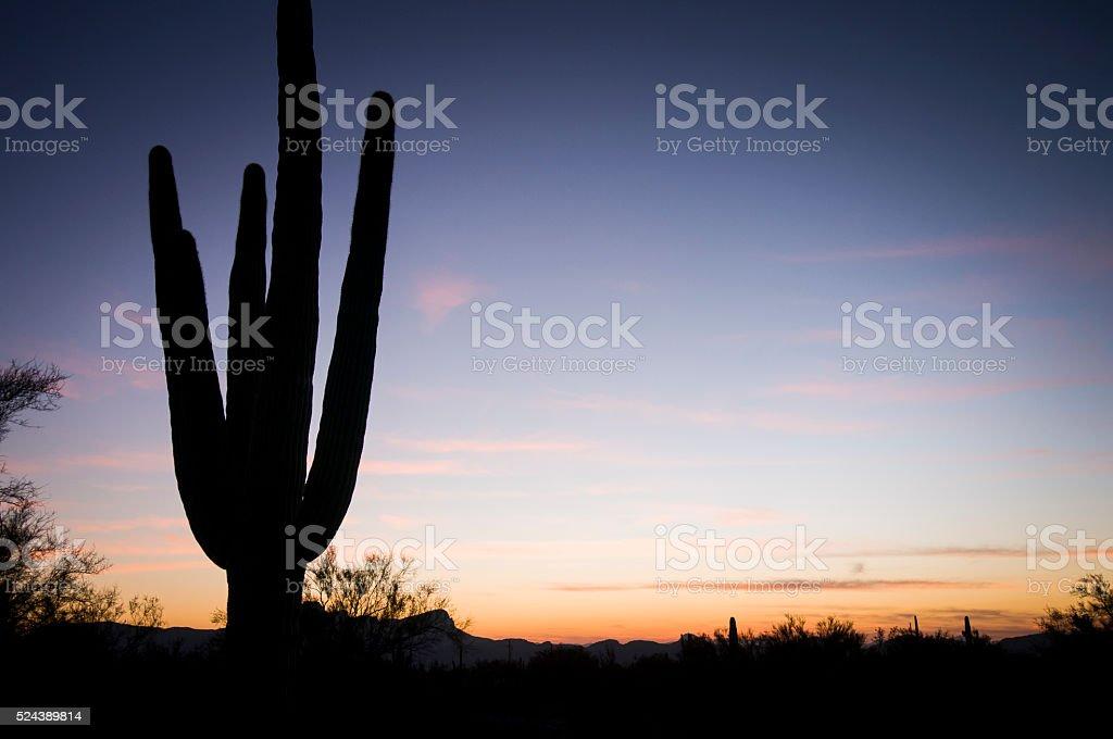Airzona Sunset stock photo