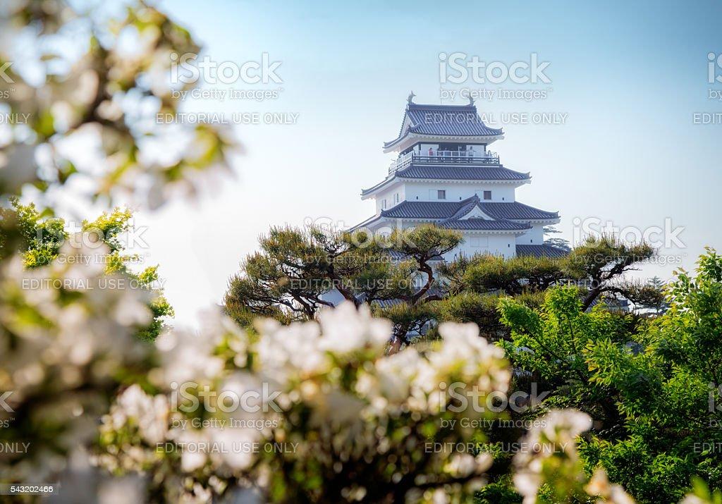 Aizuwakamatsu castle in Spring stock photo