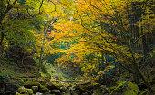 Akame Creek in Nabari, Mie, Japan