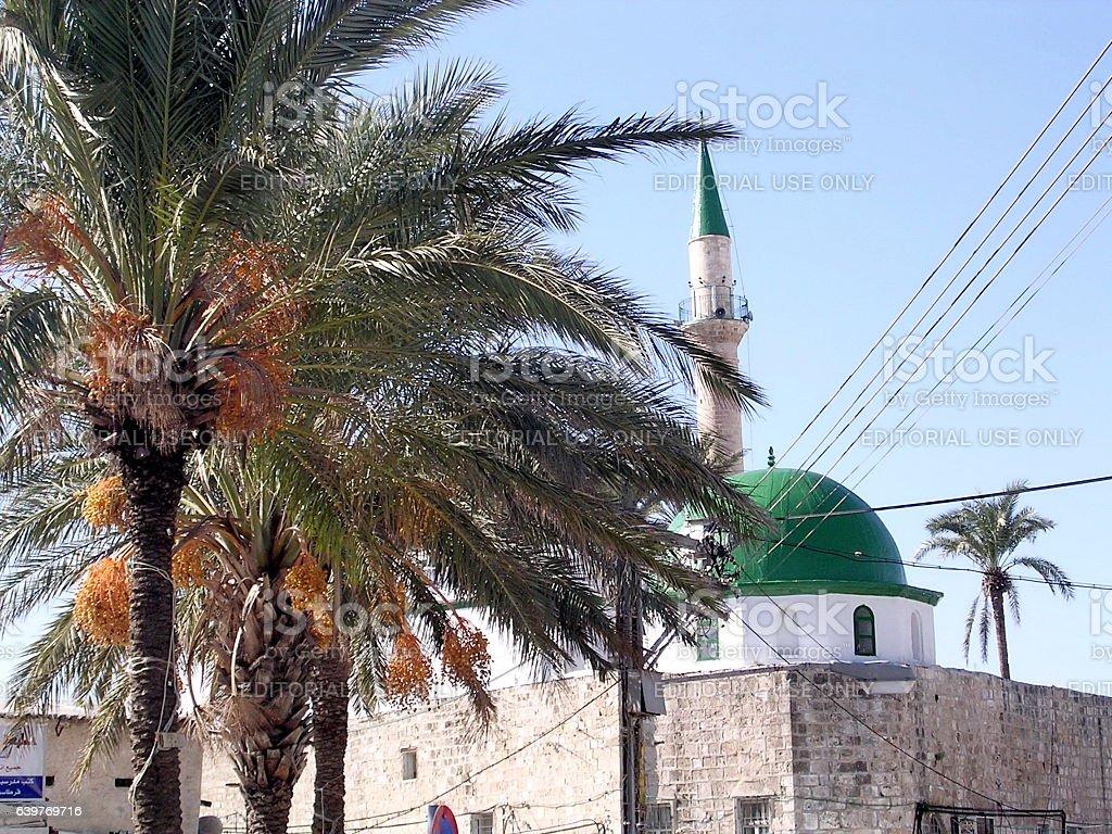 Akko palms and El-Jazzr Mosque 2003 stock photo