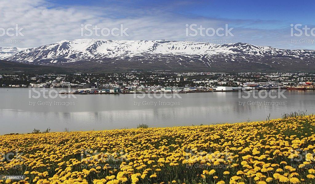 Akureyri city - Iceland royalty-free stock photo