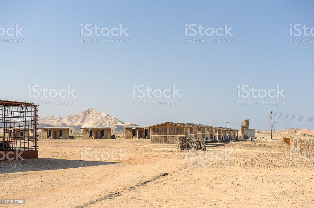 Al Naseem Camp royalty-free stock photo
