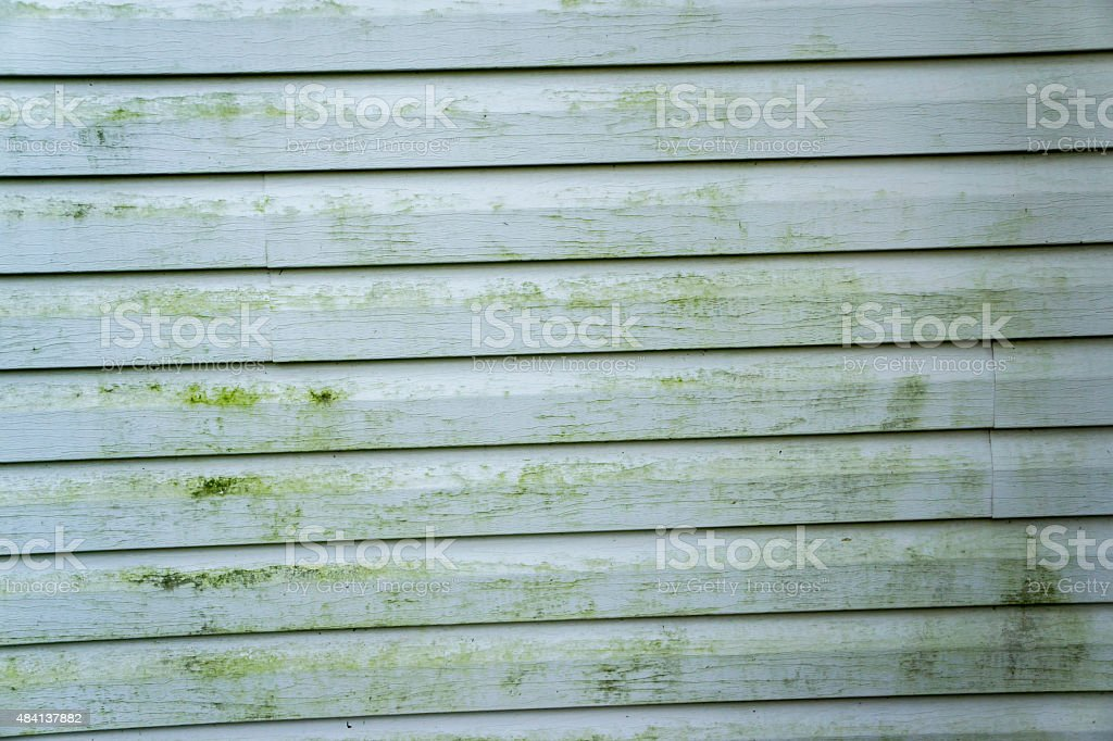 Alage & Mold On A House With Vinyl Siding stock photo