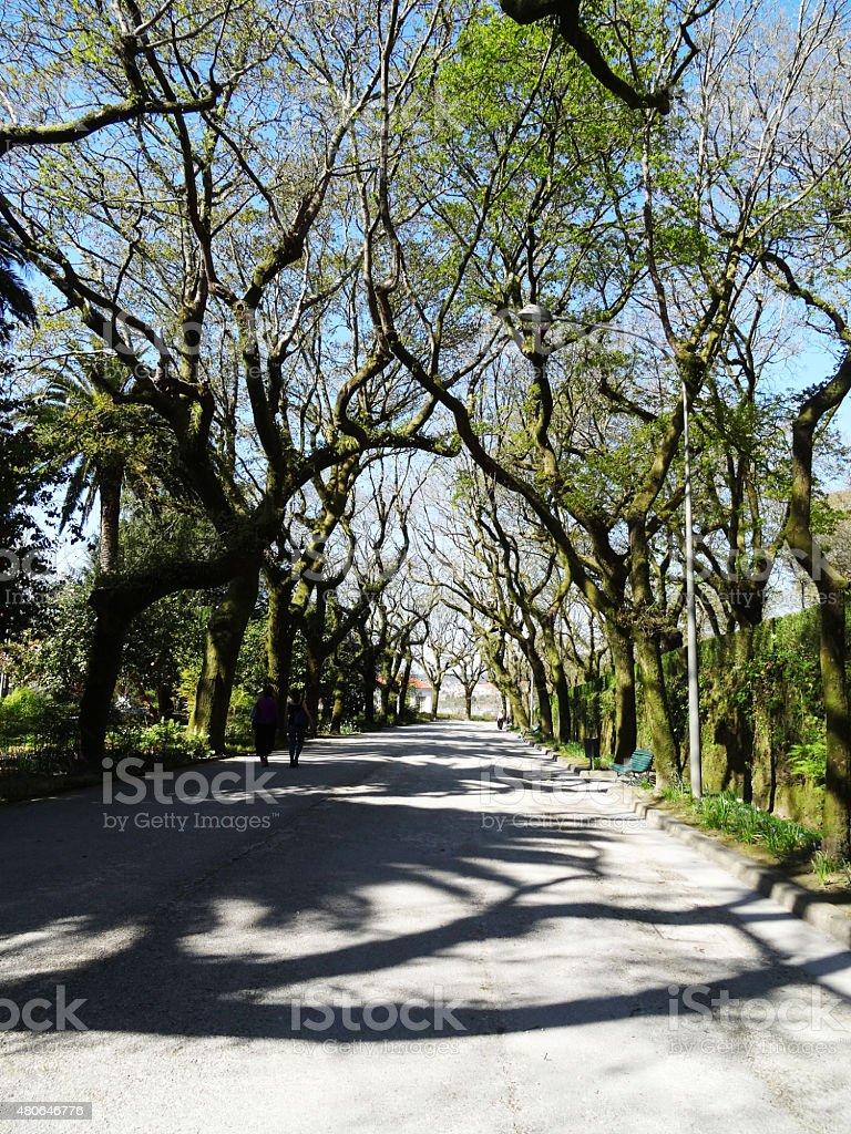 Alameda garden landcape - Santiago Compostela - Spain stock photo