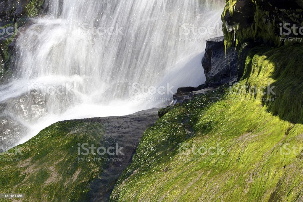 Alamere Falls with Moss stock photo