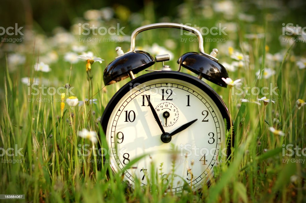 Alarm clock in nature royalty-free stock photo