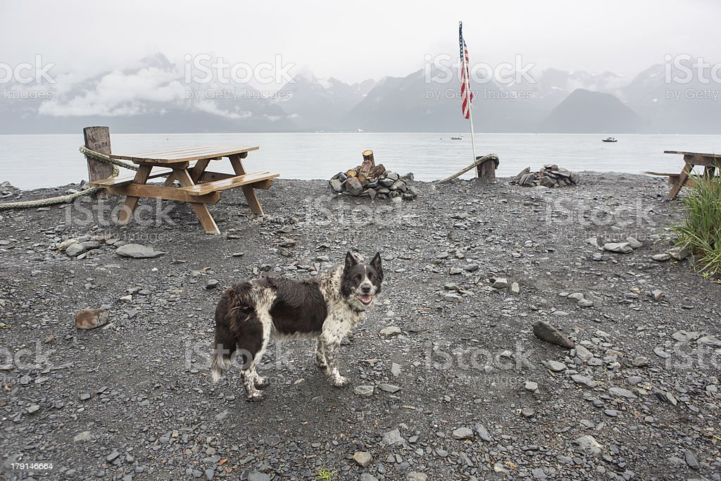 Alaska Campground stock photo
