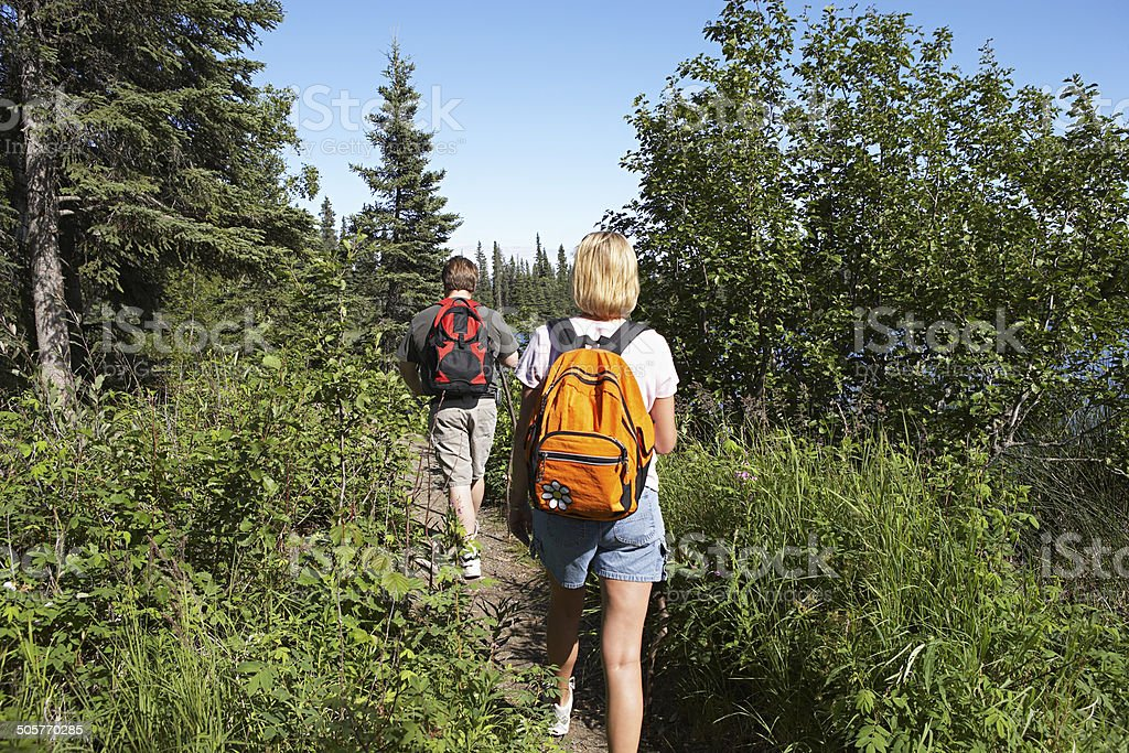 USA, Alaska, couple walking along trail in forest stock photo