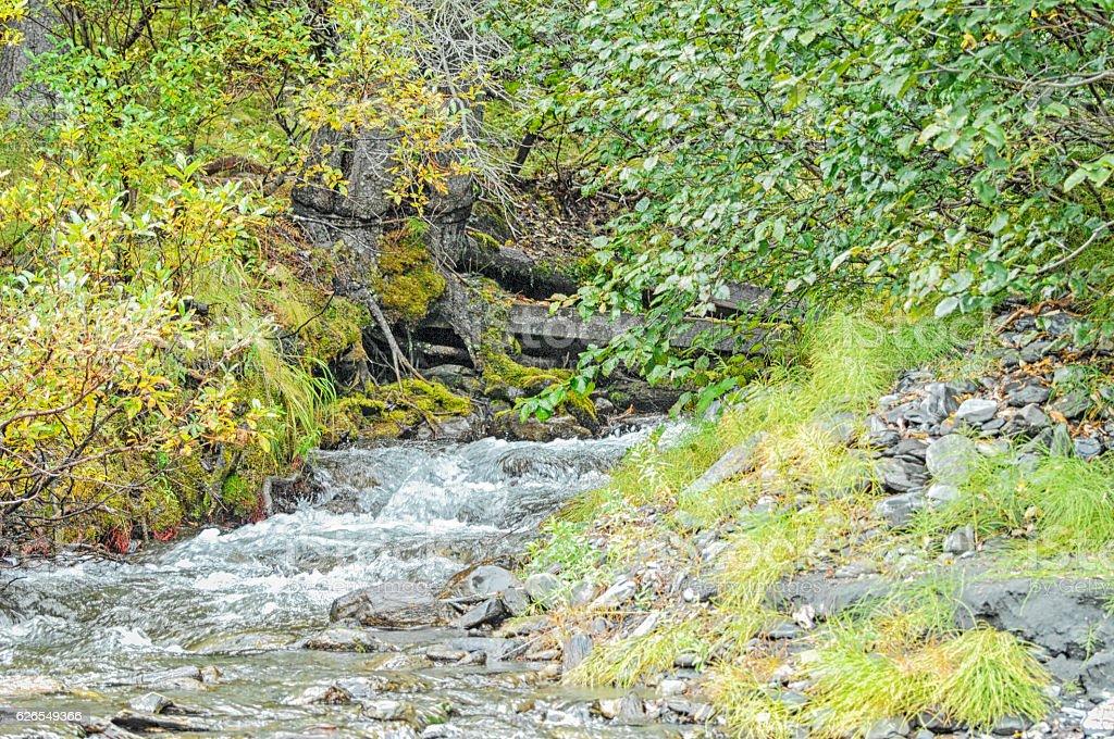 Alaska Glacier Stream stock photo