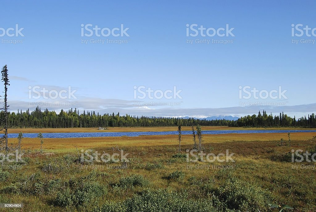 Alaska wilderness landscape stock photo