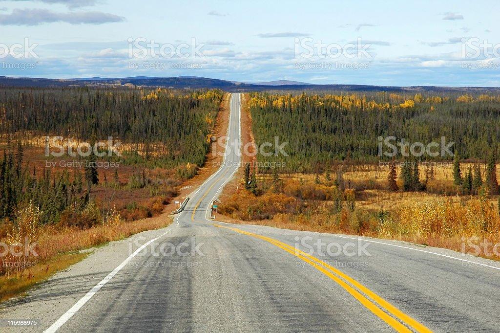 Alaskan Highway near Whitehorse,Yukon Territory,Canada royalty-free stock photo