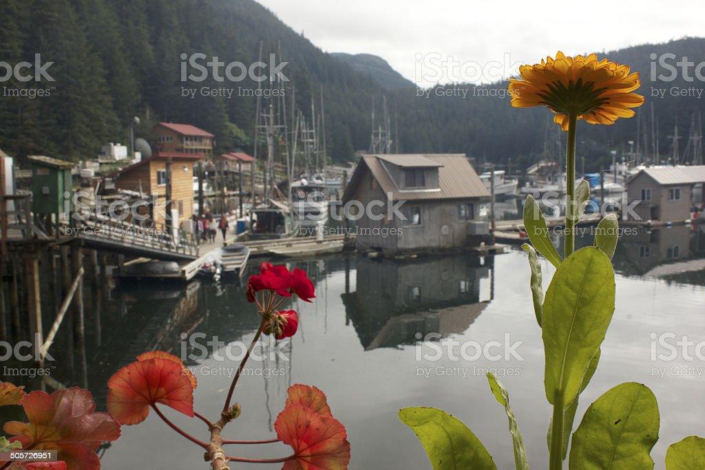 Alaskan life royalty-free stock photo