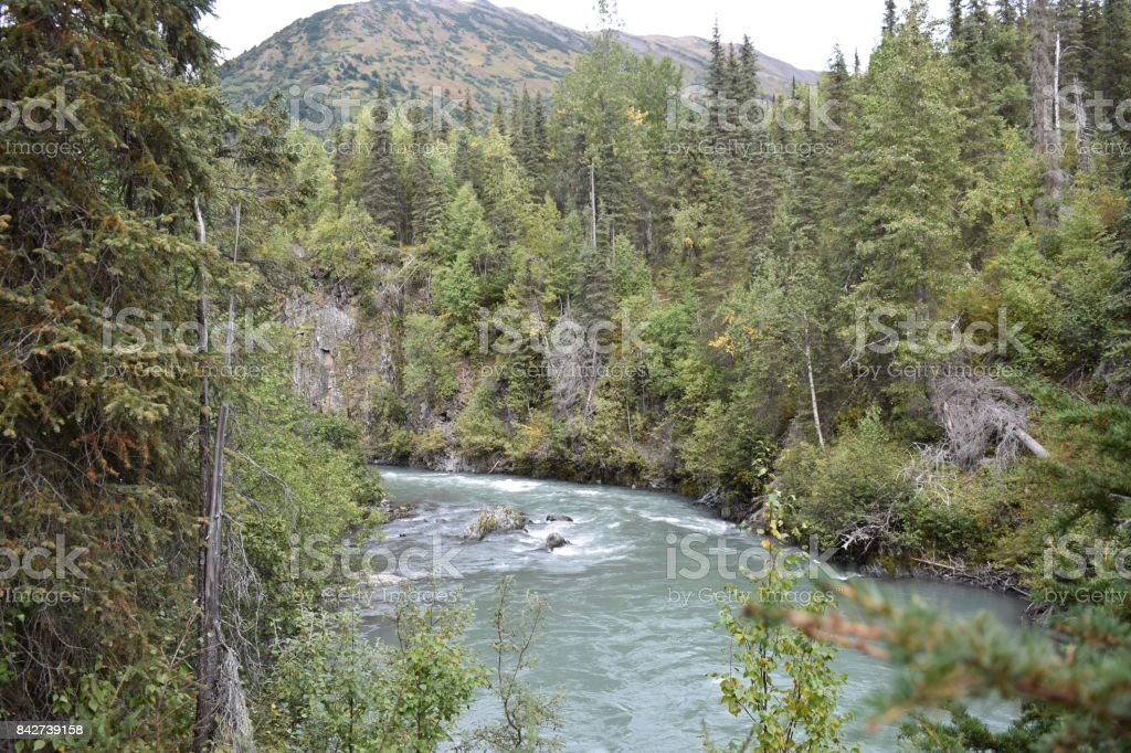 Alaskan Stream stock photo