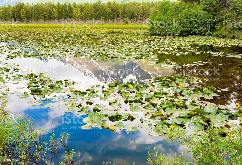 Alaska's Chugach Mountains reflecting in a lake stock photo