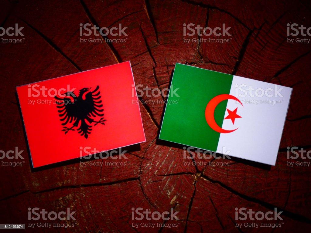 Albanian flag with Algerian flag on a tree stump isolated stock photo