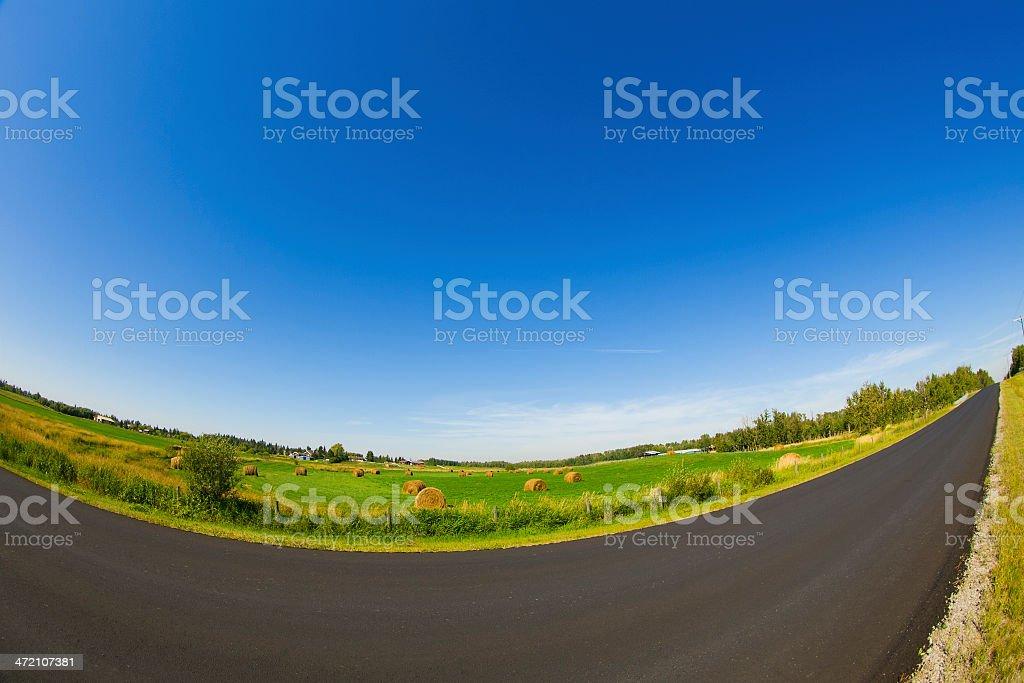 Alberta Country Road royalty-free stock photo