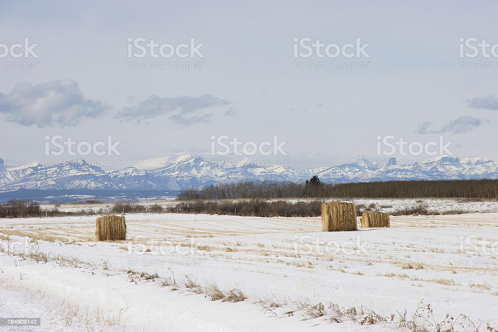 Alberta Foothills and Mountains in Winter royalty-free stock photo