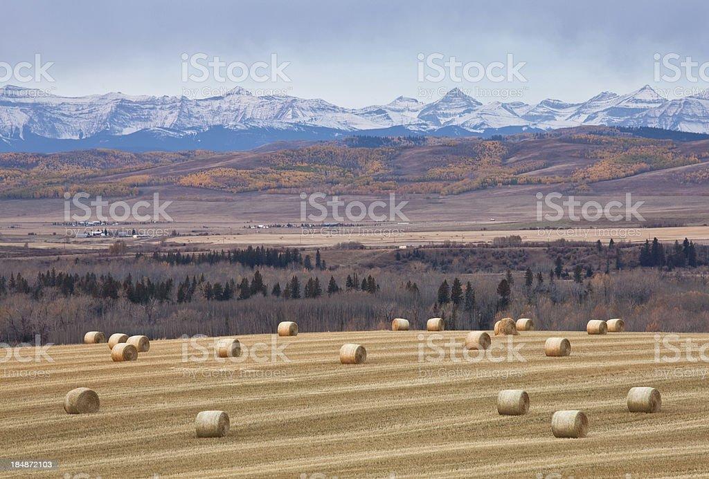 Alberta Foothills stock photo