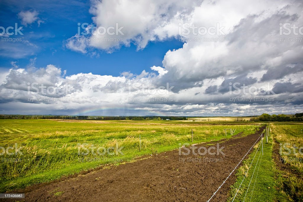 Alberta in August stock photo