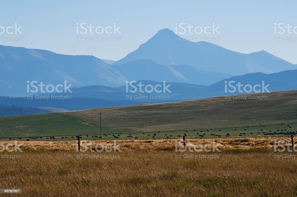 Alberta landscape with mountains and fields. royalty-free stock photo
