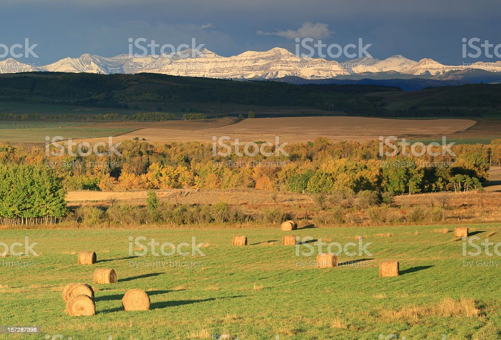 Alberta Rocky Mountains and Hay Bales stock photo