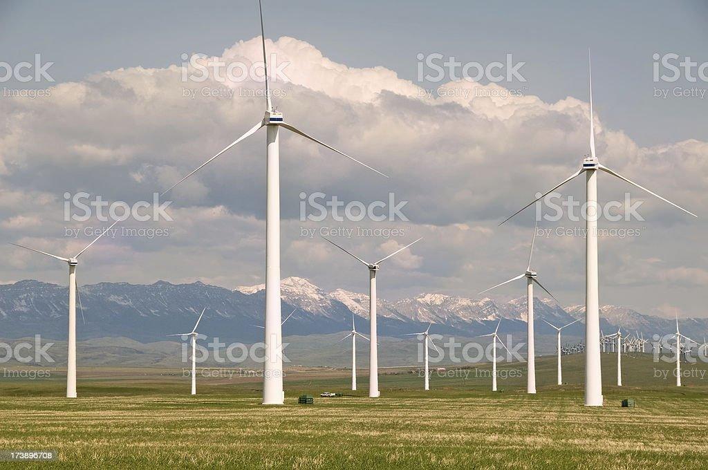 Alberta wind turbines in foothills royalty-free stock photo
