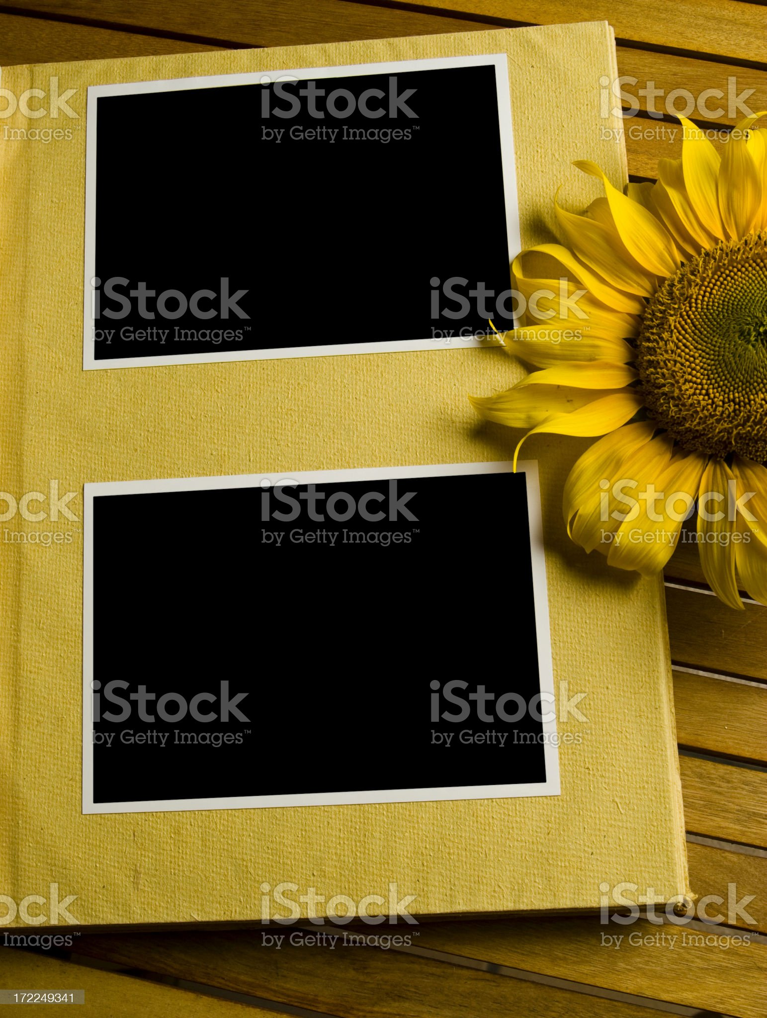 Album royalty-free stock photo