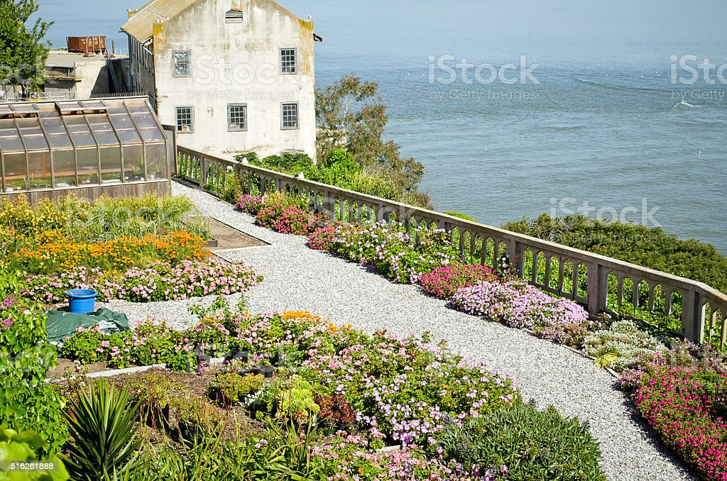 Alcatraz Garden stock photo