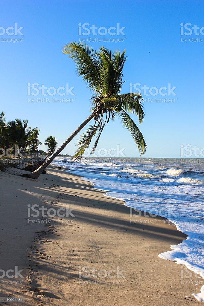 Alcobaça beach in Prado city, Bahia, Brazil stock photo