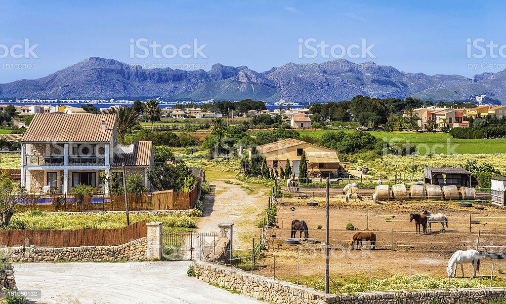 Alcudia (Mallorca) landscape stock photo
