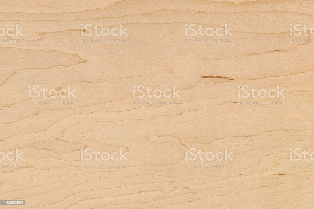 Alder. High resolution natural wood texture, no scratches, no dust. stock photo