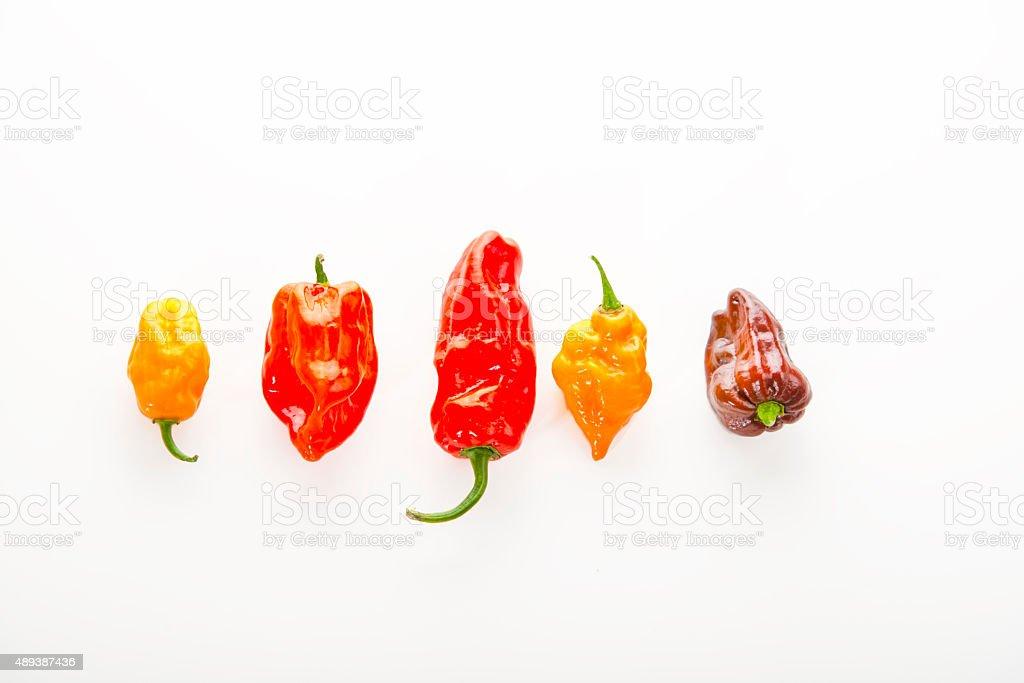 Aleppo chili pepper stock photo