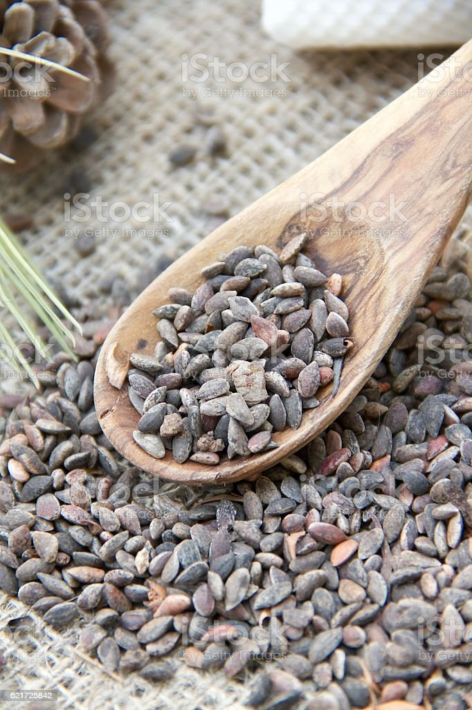 Aleppo pine kernels in the olive wood spoon stock photo