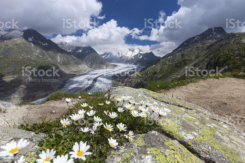 Aletsch Glacier (Aletschgletscher) stock photo